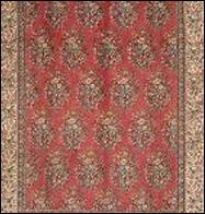 houston carpet cleaning TEXAS